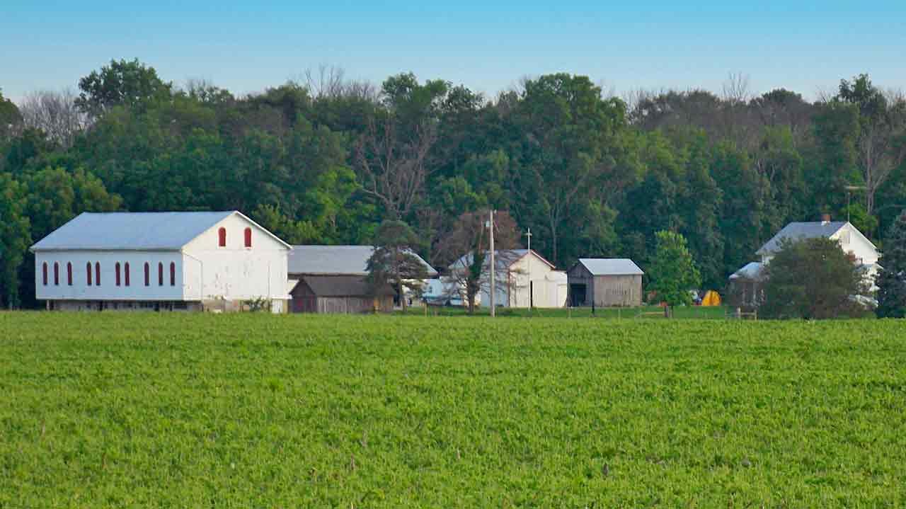 Keener Farm CSA